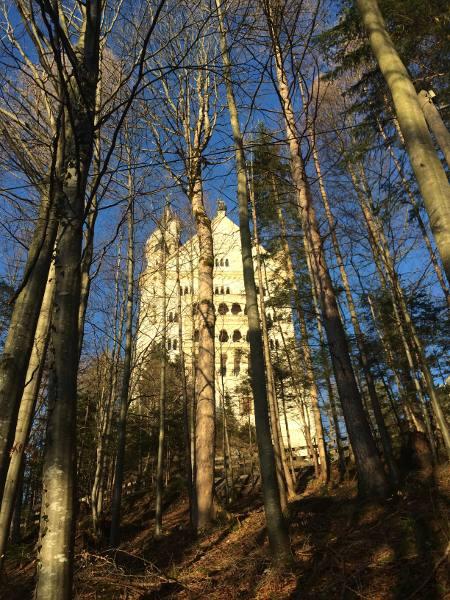 castello-neuschwanstein13