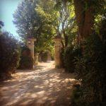provenza-van-gogh-clinica
