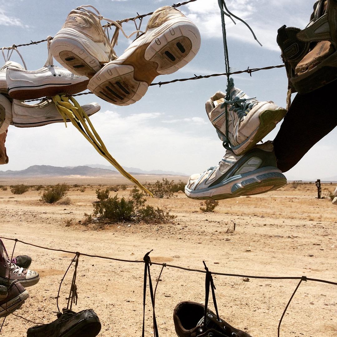 california-rice-shoe-fence-albero-delle-scarpe