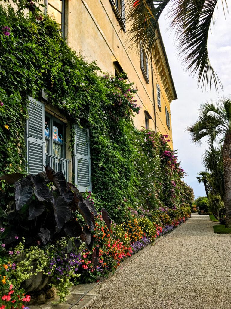 giardino fiorito isola madre